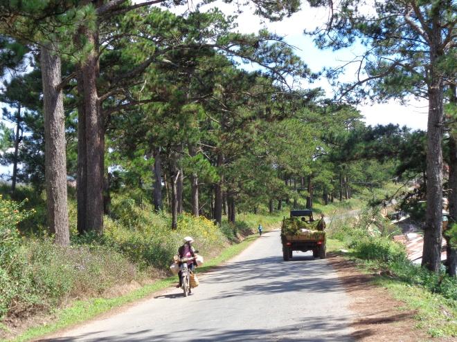 Route entre Cau Dat et Dalat, 24 novembre 2014.