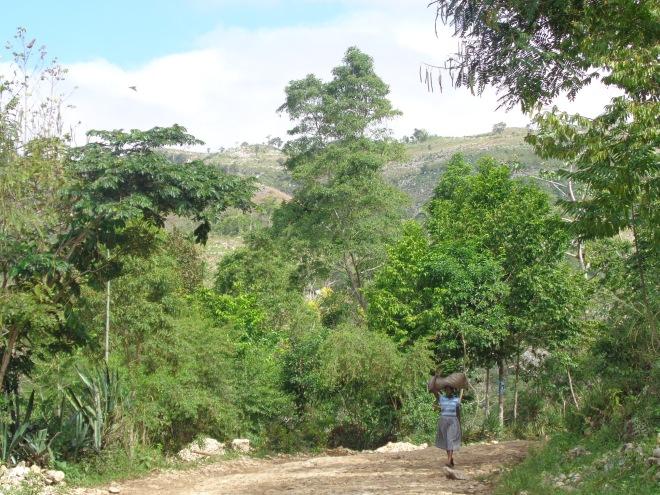 À l'est du village de Marigot et, ci-dessous, première crevaison...