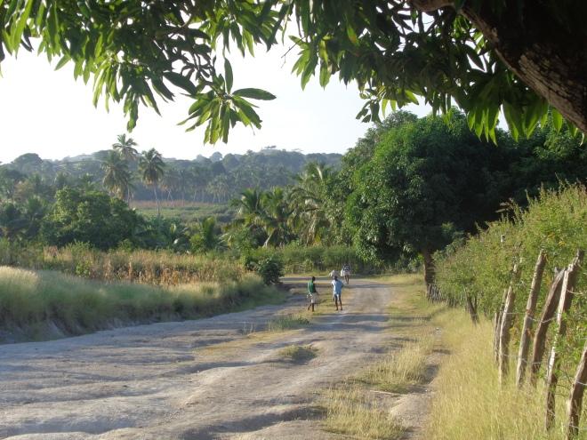 Route entre l'anse Dufour et le village de Madame Bernard, jeudi 21 janvier