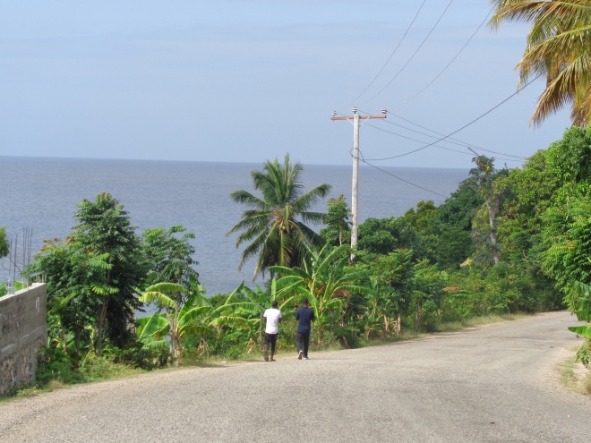 Route entre Port-Salut et Port-à-Piment, département du sud, samedi 16 janvier.