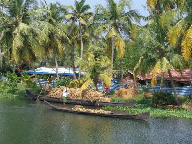En bateau, entre Alleppey et Kollam, le samedi 17 décembre. Les pirogues transportent de la fibre de noix de coco, une des principales ressources du Kerala. Matériel grâce auquel on fabrique de la corde, des brosses, des tapis...