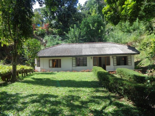 Kandy Cottage, une très bonne adresse (www.kandycottage.com), loin de l'agitation de la ville. L'après-midi, des petits singes viennent jouer dans le jardin...