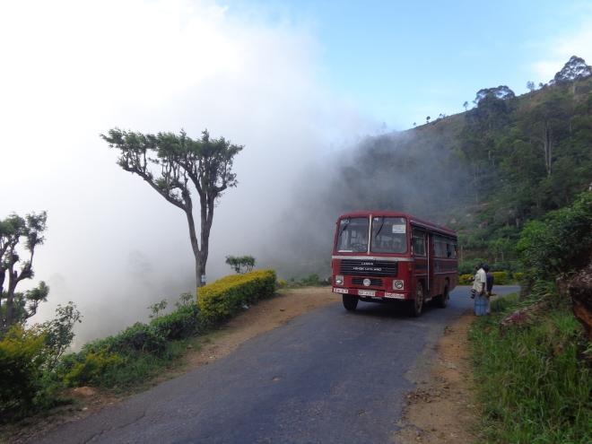 La route entre Haputale et Dambatenne. mercredi 4 janvier...