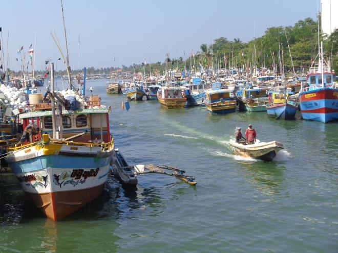 Le petit port de Negombo, samedi 24 décembre
