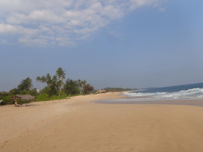 La longue plage de sable de Tangalle, en regardant vers l'est, mercredi 11 janvier.