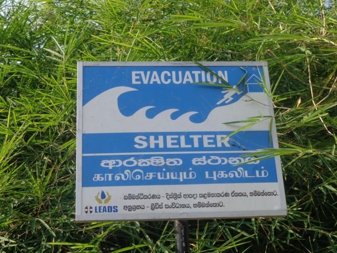 Des paneaux, en trois langues (cinghalais, tamoul et anglais) sont visibles un peu partout sur la côte sud...